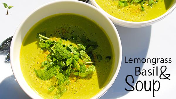 feature image lemongrass basil soup