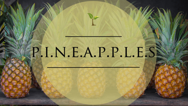 pineapples-NEW