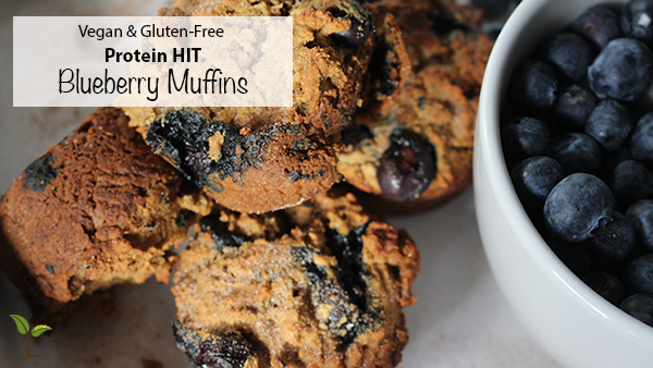 Blueberry Muffin Feature Image